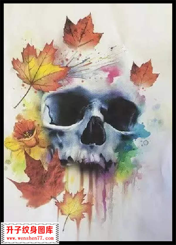 彩色泼墨 骷髅头纹身手稿 枫叶纹身手稿