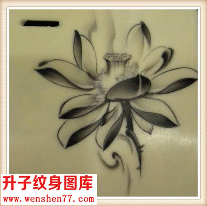 学员练习作品荷花纹身