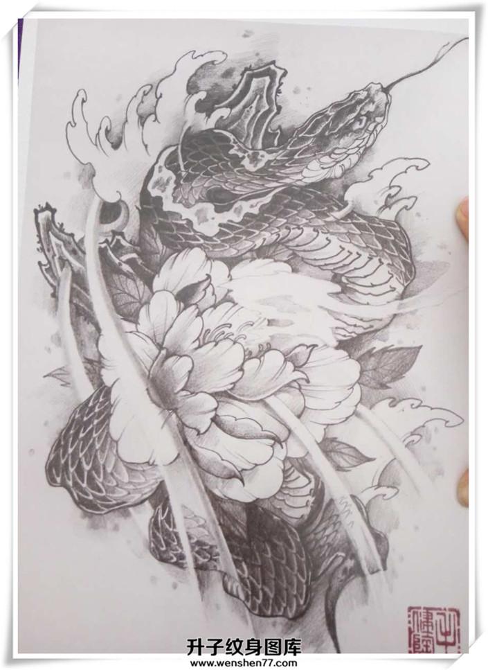 蛇牡丹花纹身手稿
