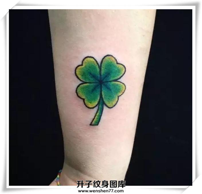 四叶草纹身图案图片