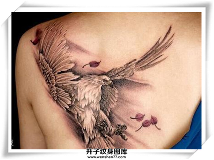 胸前纹两个巴掌大的鹰纹身是什么价位?