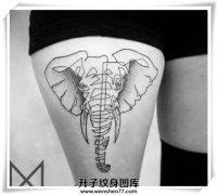 大腿大象纹身图案 大象纹身价格 大象纹身哪里好