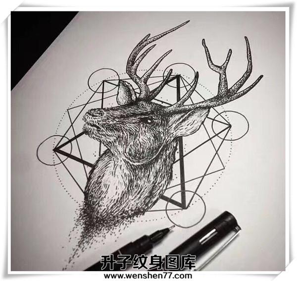 鹿头纹身 鹿头纹身手稿 鹿头纹身费用