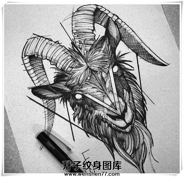 羊头纹身手稿 羊头纹哪里好看