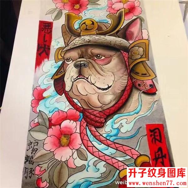 斗牛犬纹身手稿图案大全-纹身图片