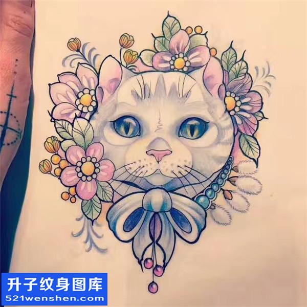 猫纹身手稿图案大全图片