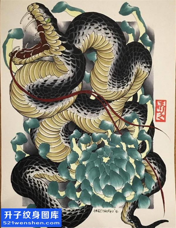 蛇纹身 蛇纹身手稿图案大全 蛇纹身图片