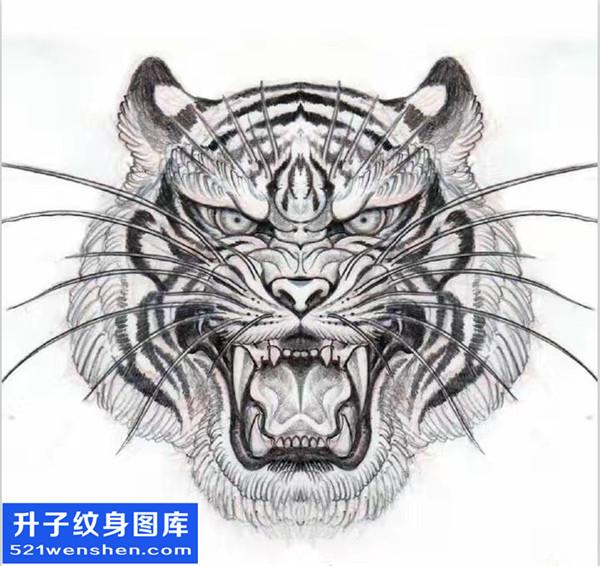 老虎纹身手稿图案大全内容图片分享
