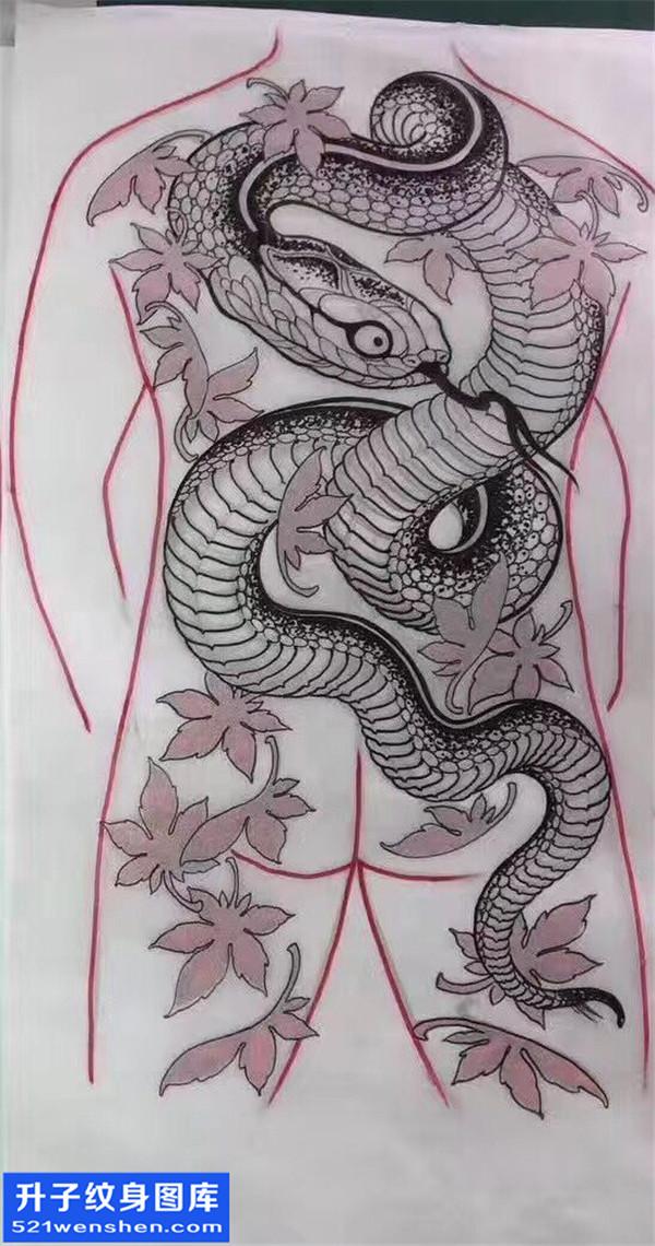 蛇纹身手稿图案大全 动物纹身